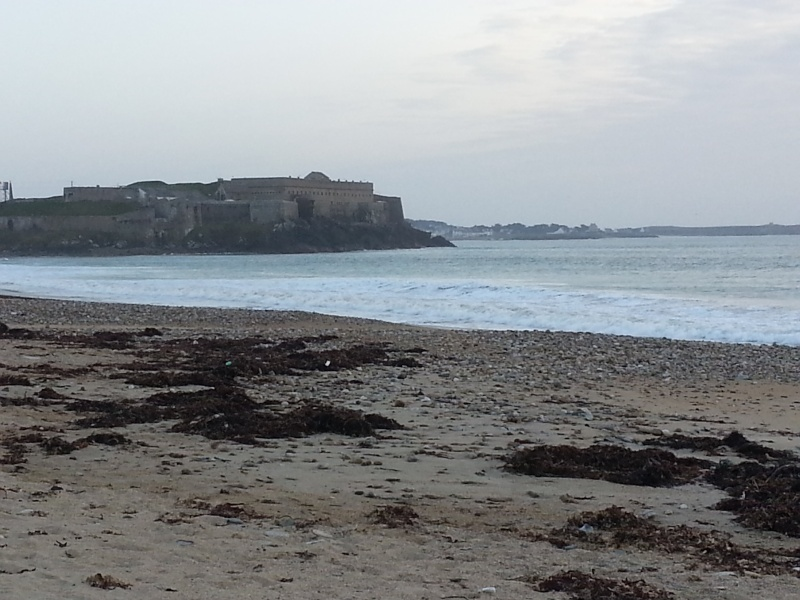 Un week-end en Bretagne 20140329