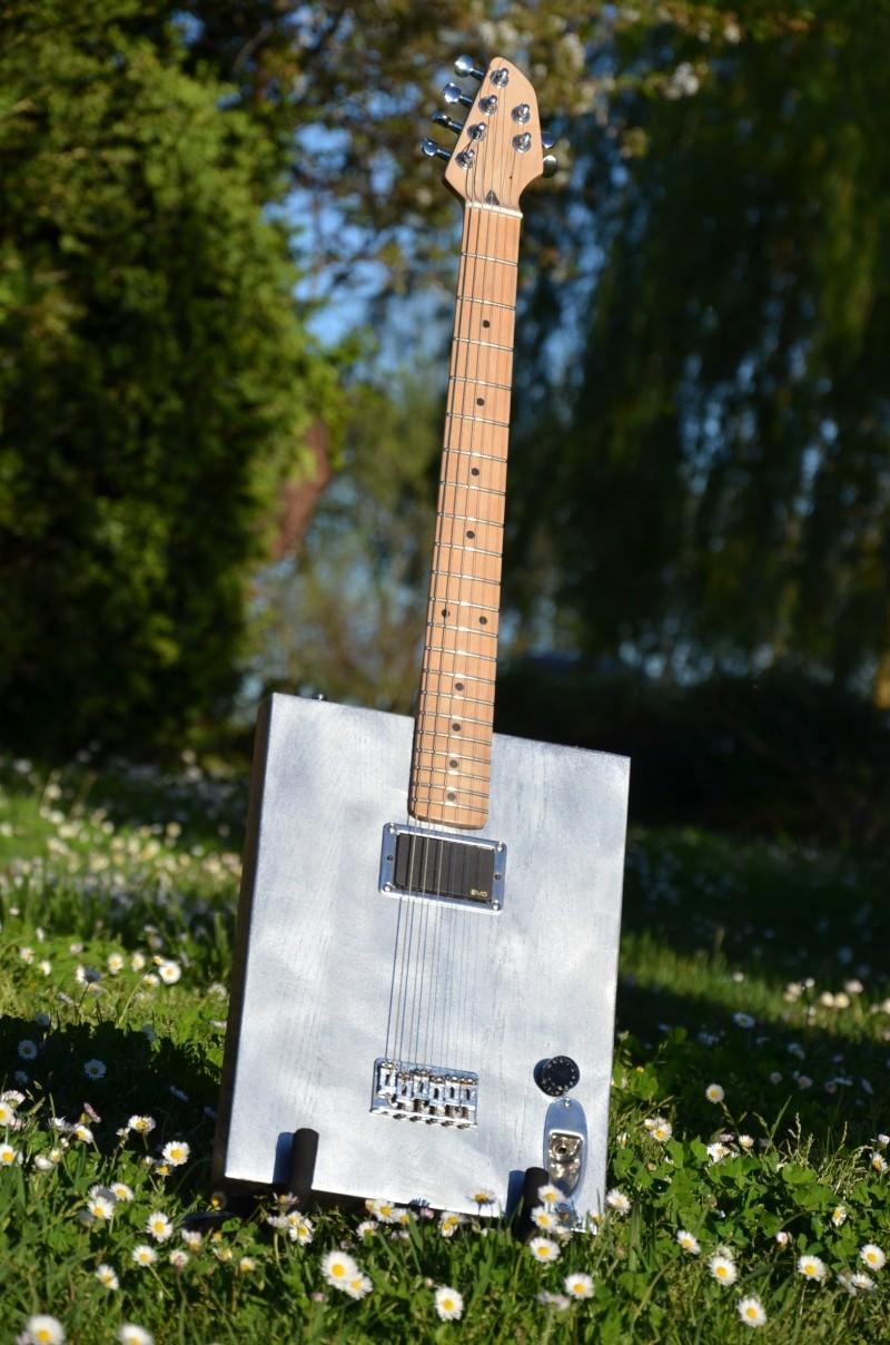 The Diddstein guitar Dsc_4011