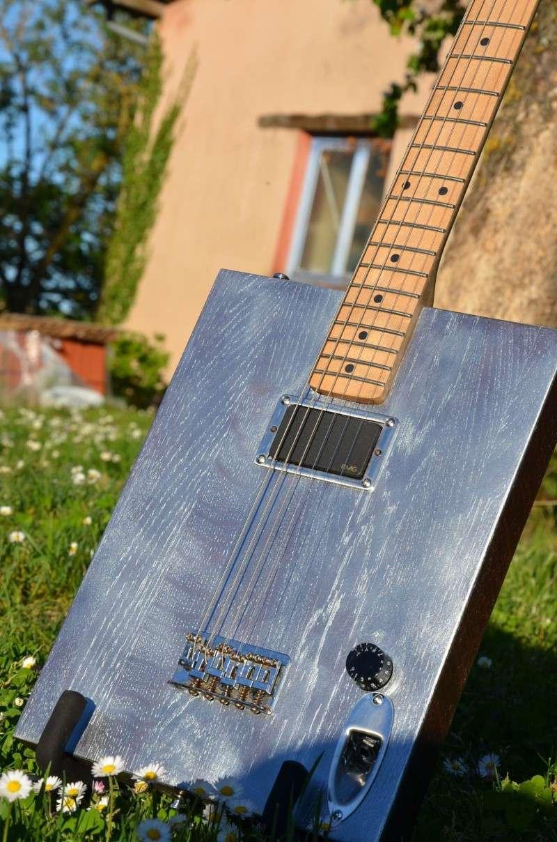 The Diddstein guitar Dsc_4013