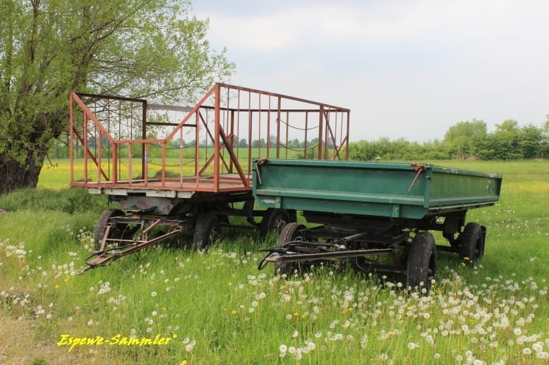 Aktuelle Sichtungen von DDR Fahrzeugen im heutigen Verkehr - Seite 3 2anhae10