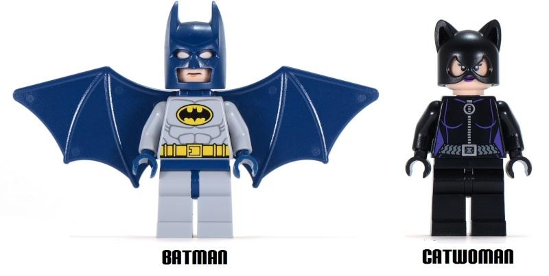 LEGO Batman/Dc Universe Super Heroes (2006 - Aujourd'hui) Sh01910