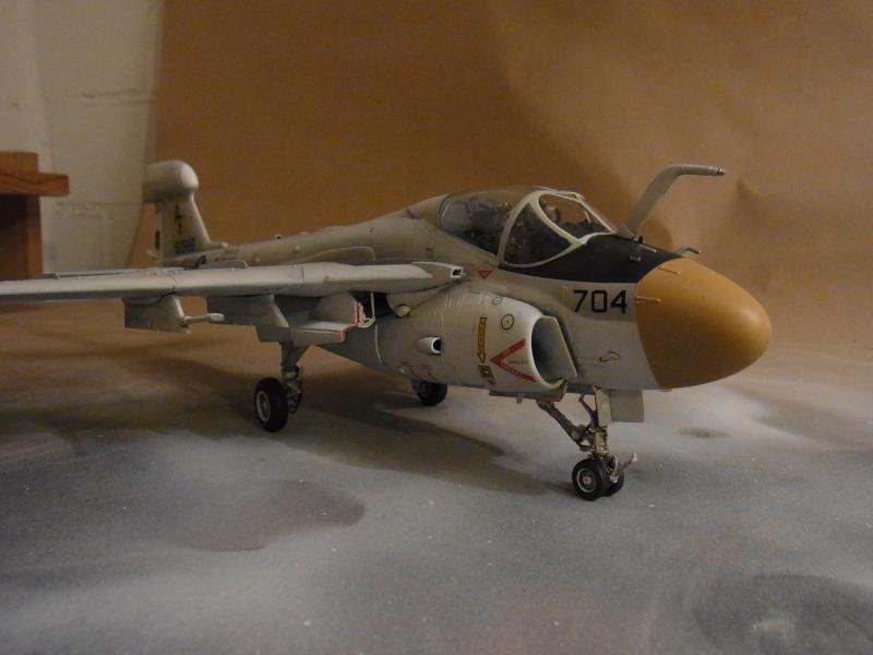 Grumman EA-6A Wild Weasel / Revell, 1:48 Rimg0034