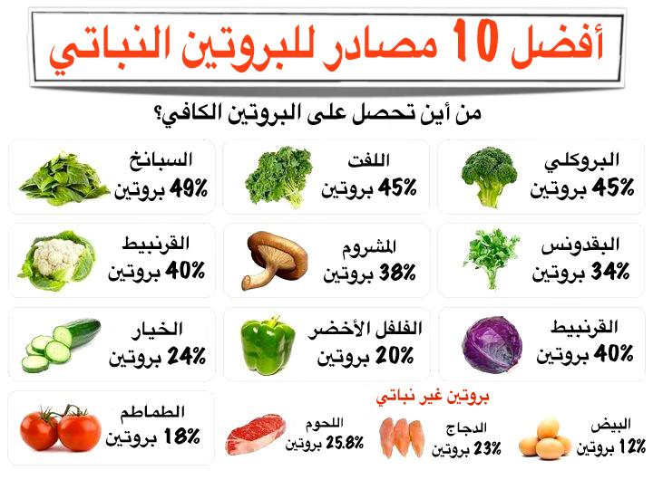 البروتينات الحيوانية والنباتية 10_pro10