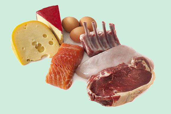 البروتينات الحيوانية والنباتية Prtn10