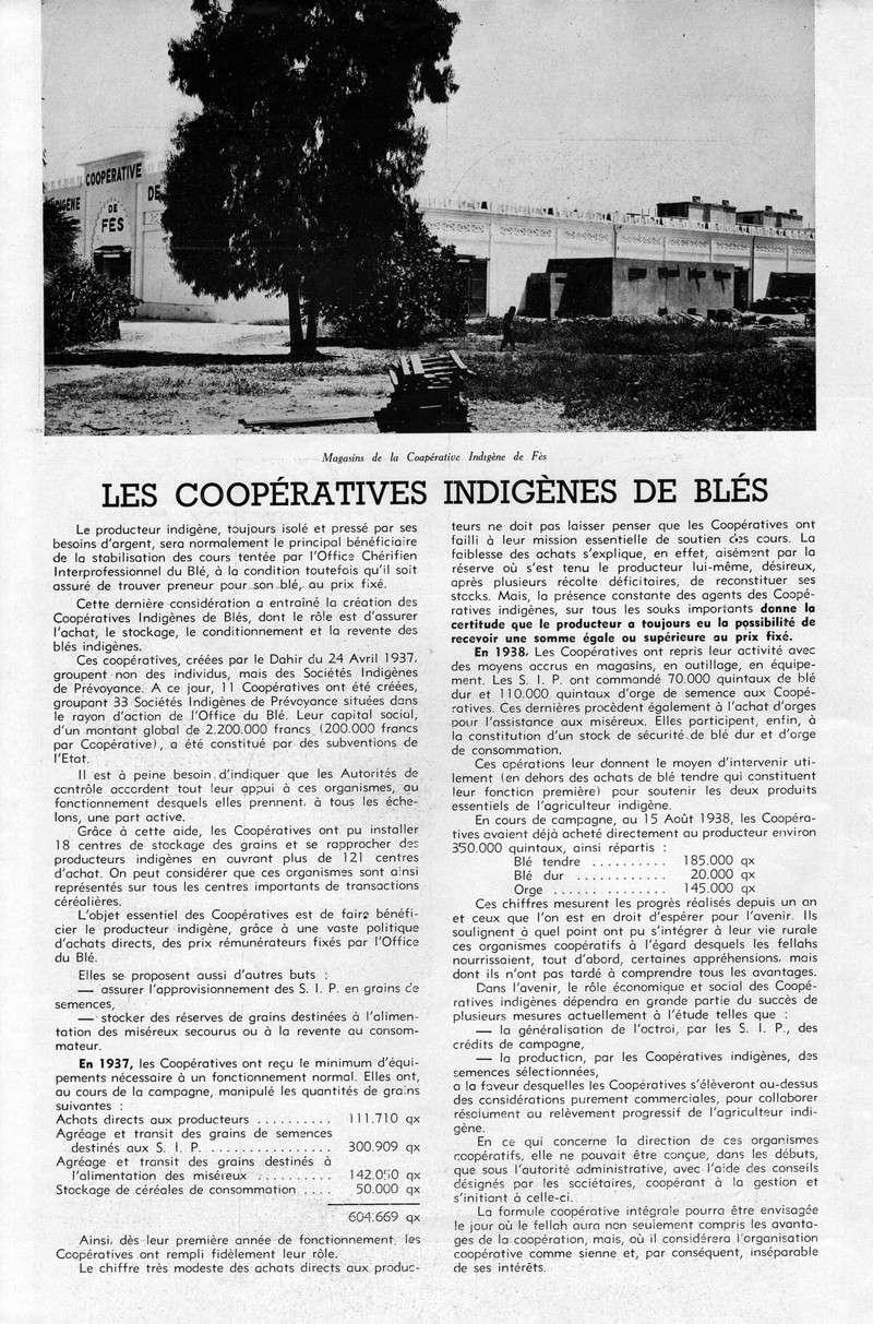 LA PRODUCTION MAROCAINE 06-sca10