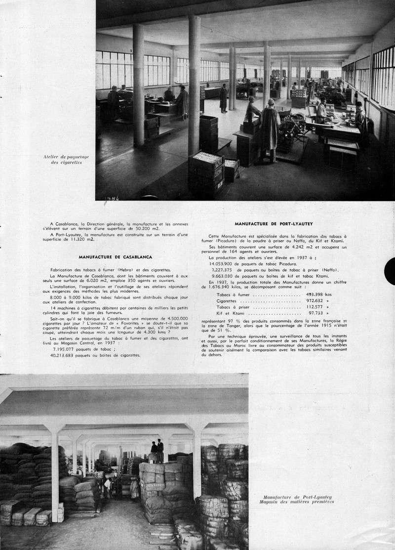 LA PRODUCTION MAROCAINE - Page 2 13-sca11