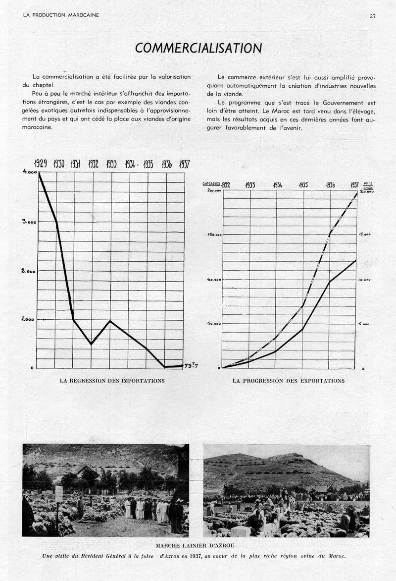 LA PRODUCTION MAROCAINE - Page 2 17-sca10