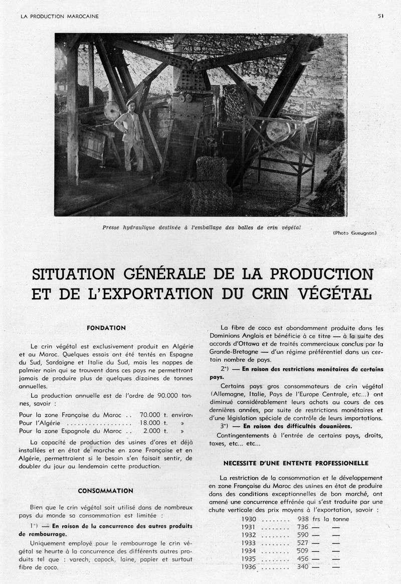 LA PRODUCTION MAROCAINE - Page 3 17-sca11