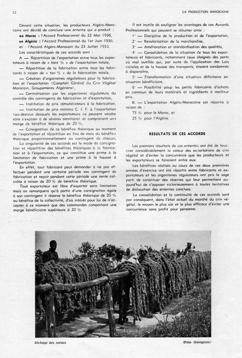 LA PRODUCTION MAROCAINE - Page 3 18-sca11