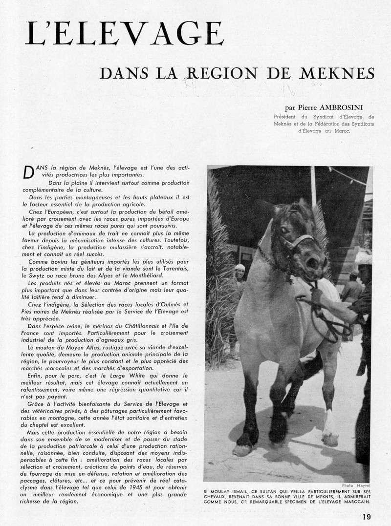 Meknès et sa Région. 18-sws12