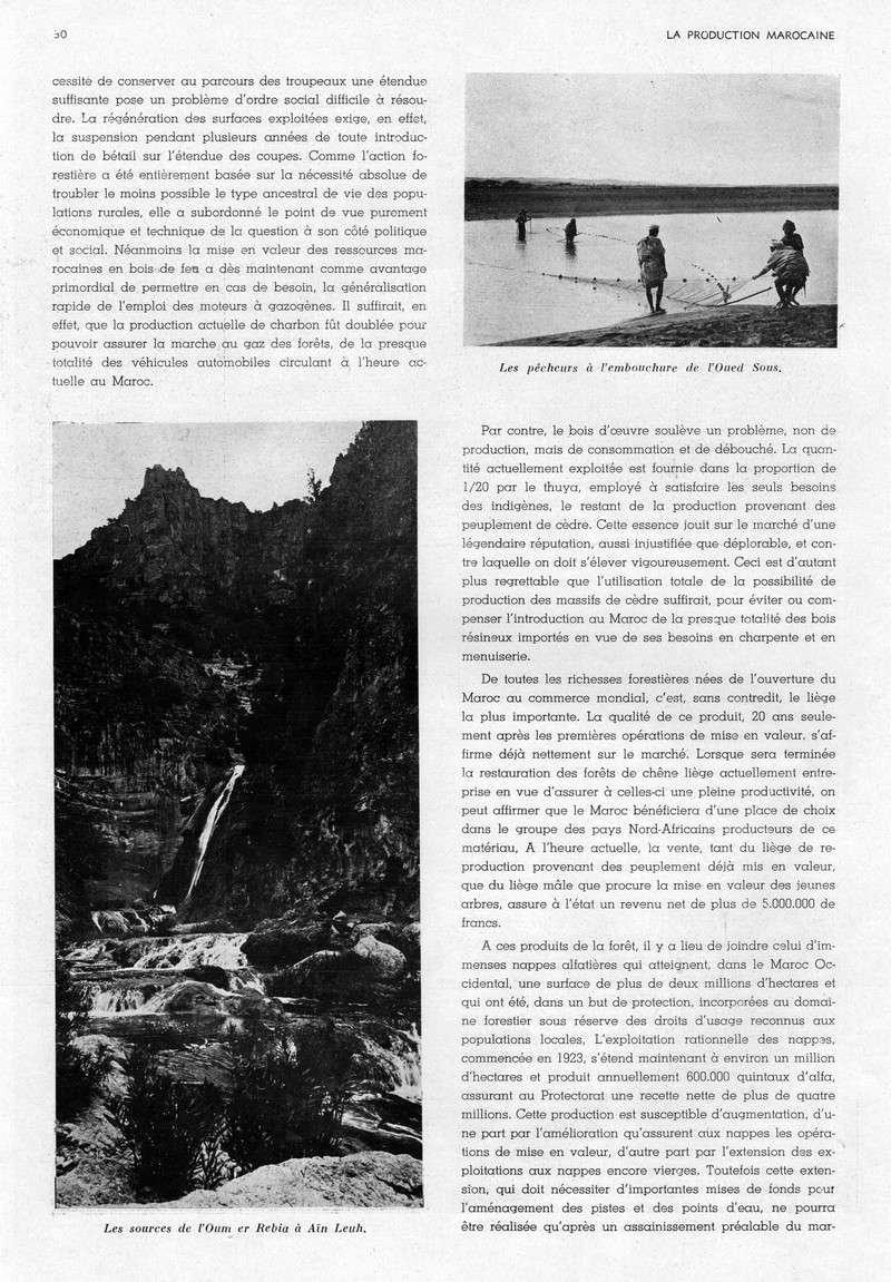 LA PRODUCTION MAROCAINE - Page 2 20-sca10