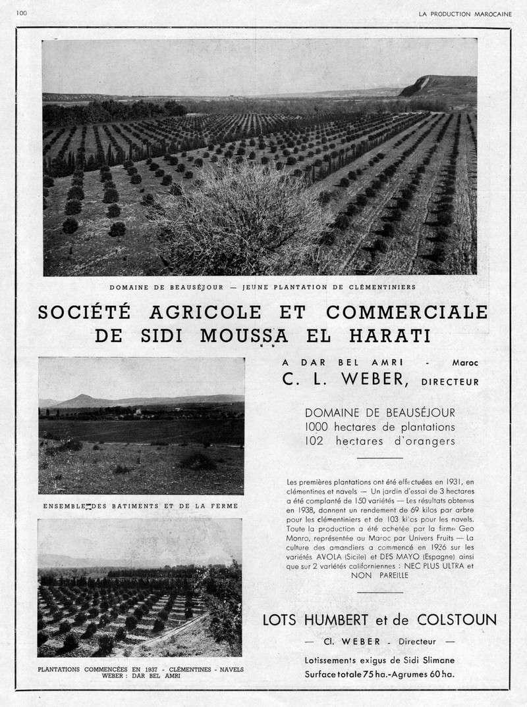 LA PRODUCTION MAROCAINE - Page 4 22-sca12