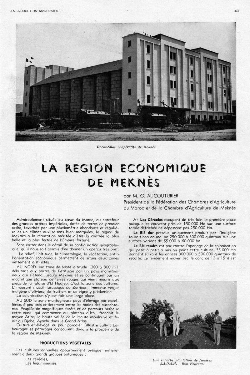 LA PRODUCTION MAROCAINE - Page 5 25-sca11