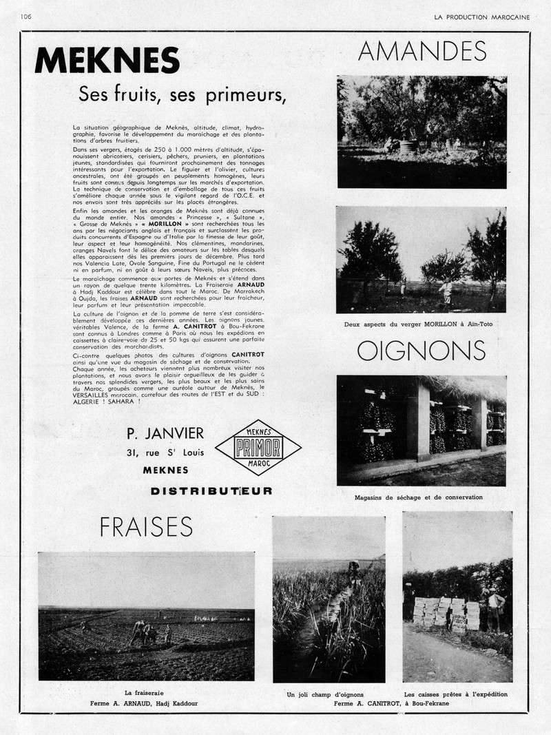 LA PRODUCTION MAROCAINE - Page 5 28-sca11