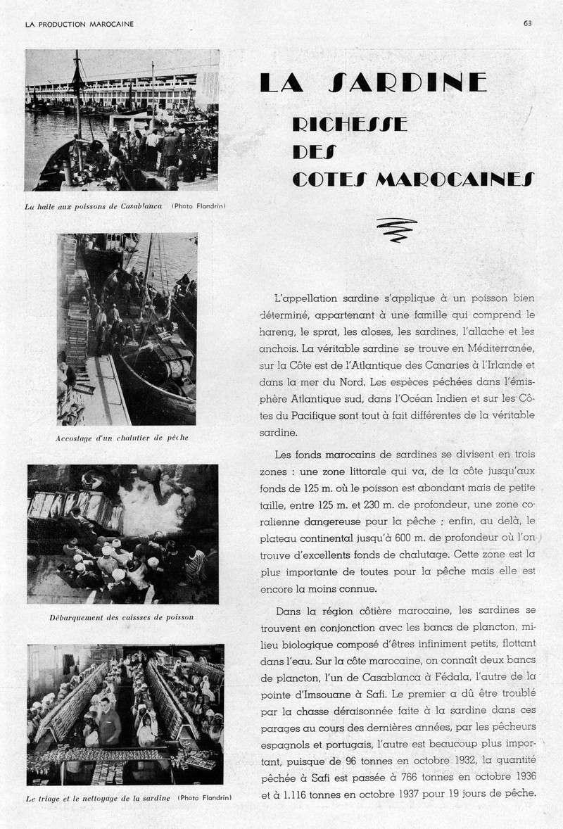LA PRODUCTION MAROCAINE - Page 3 29-sca10