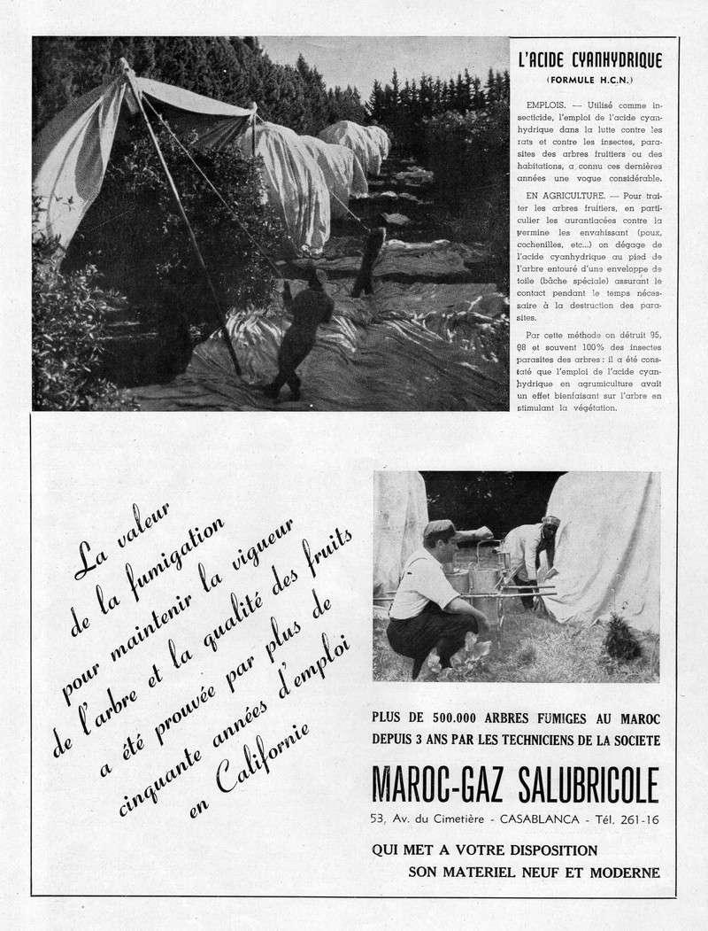 Meknès et sa Région. - Page 3 29-sws12