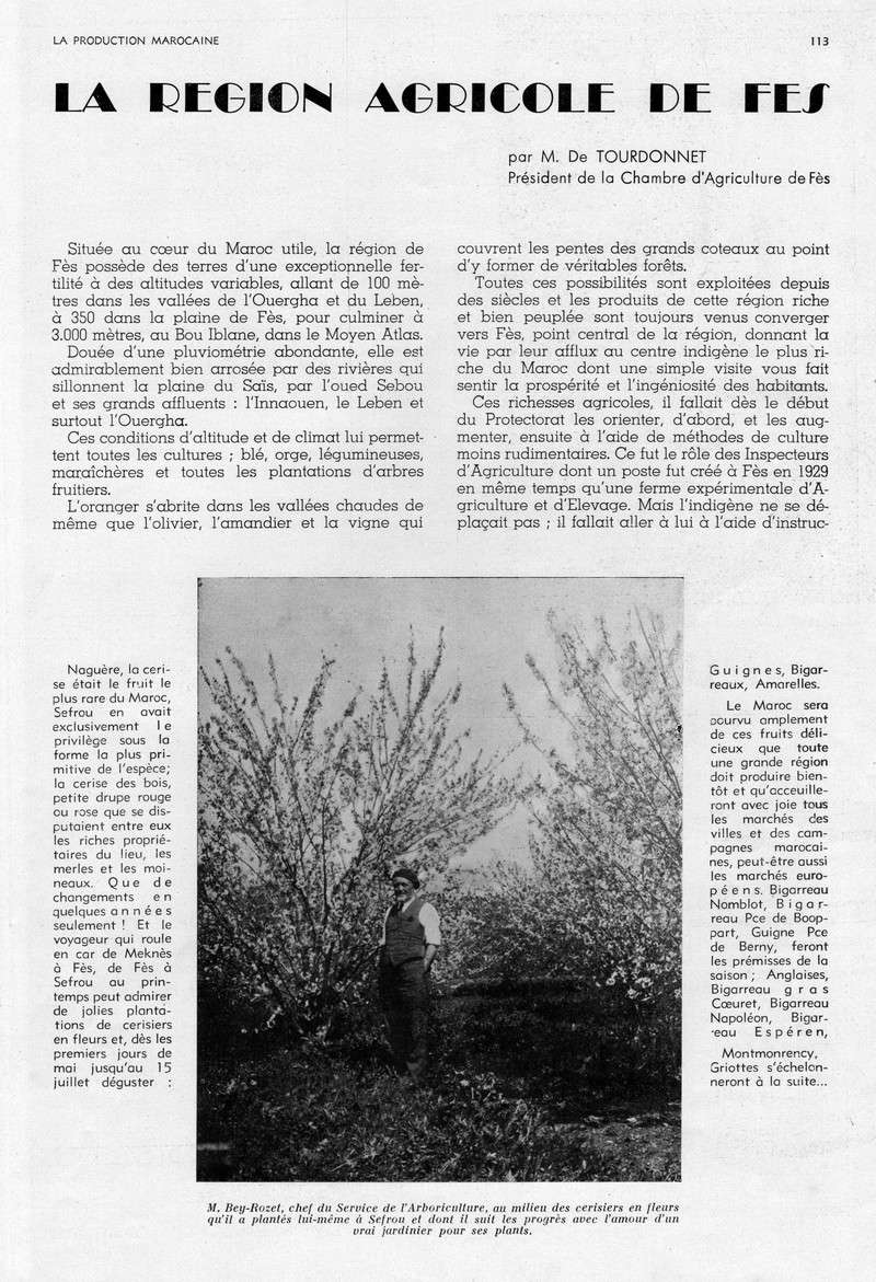LA PRODUCTION MAROCAINE - Page 5 35-sca12