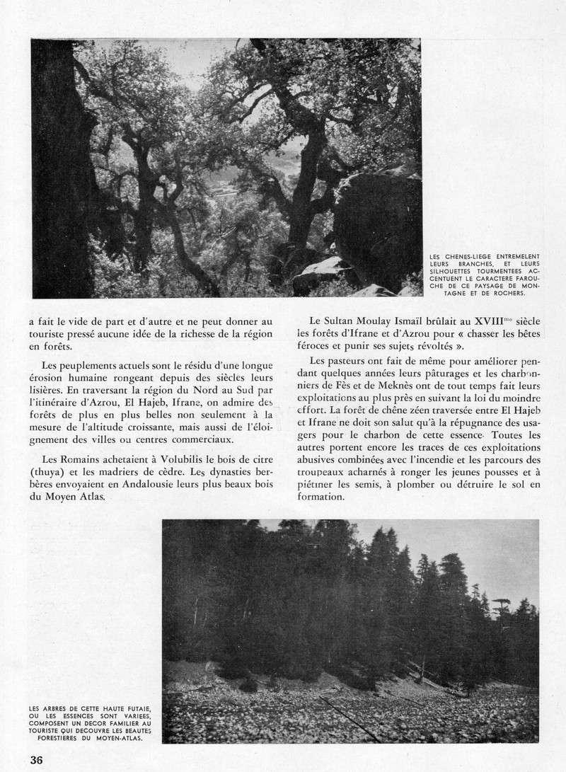 Meknès et sa Région. - Page 2 35-sws11