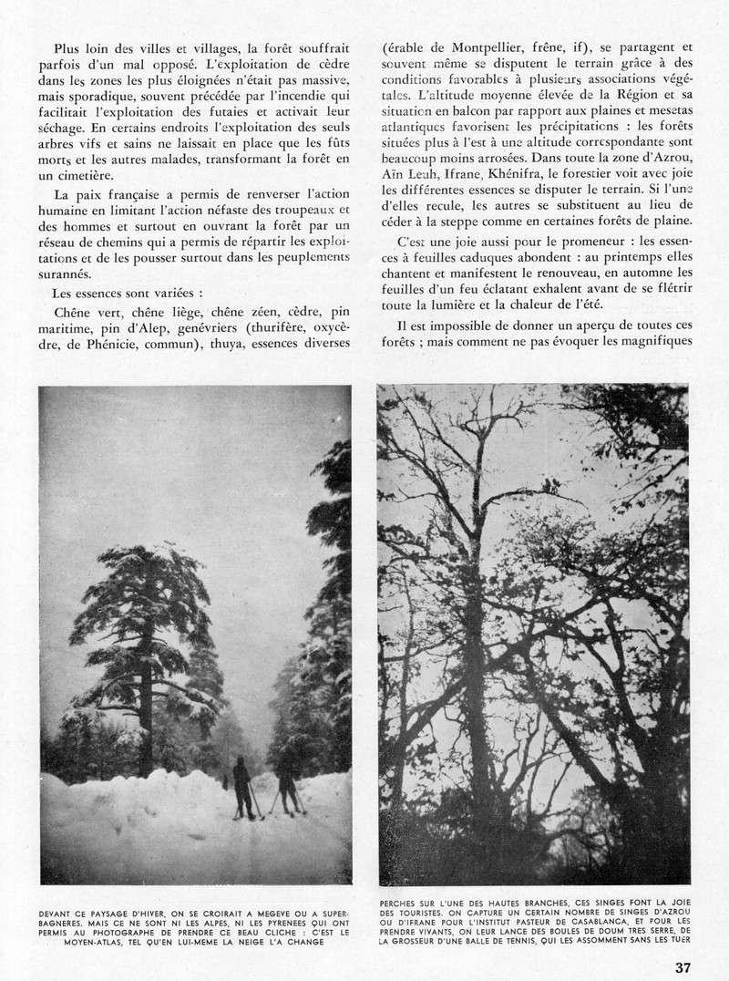 Meknès et sa Région. - Page 2 36-sws11