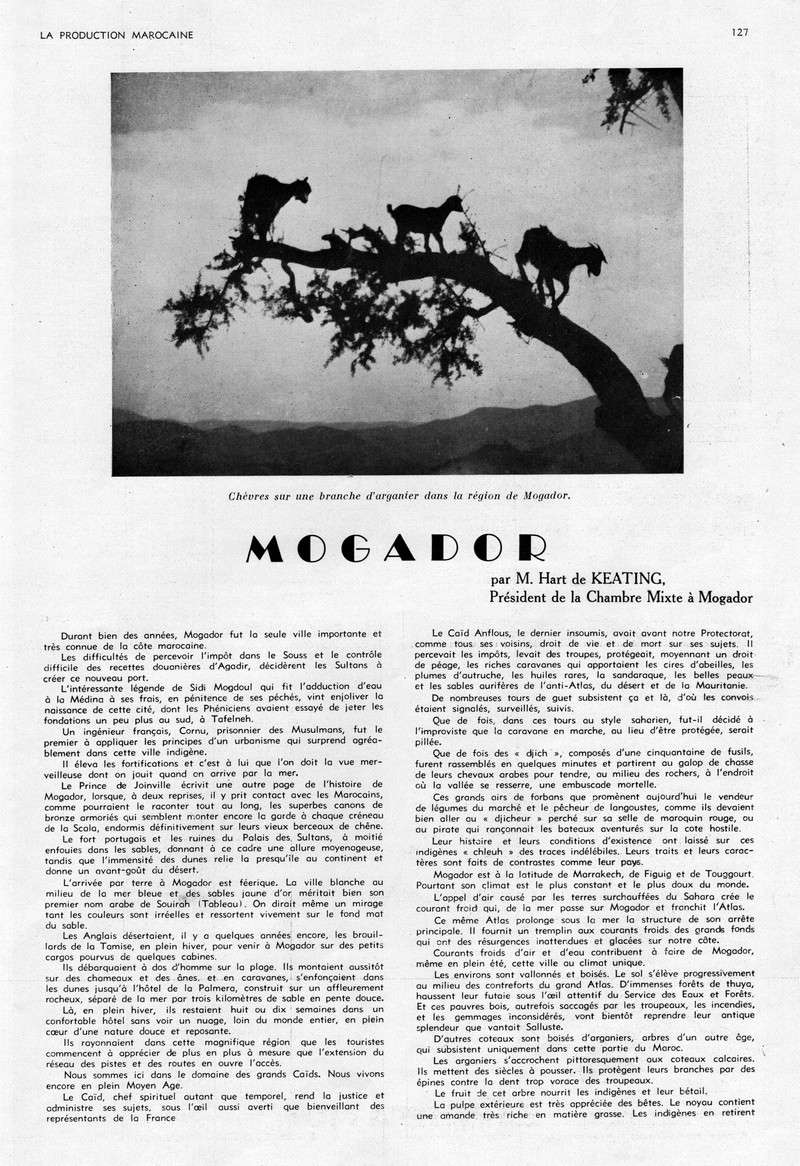 LA PRODUCTION MAROCAINE - Page 6 49-sca10