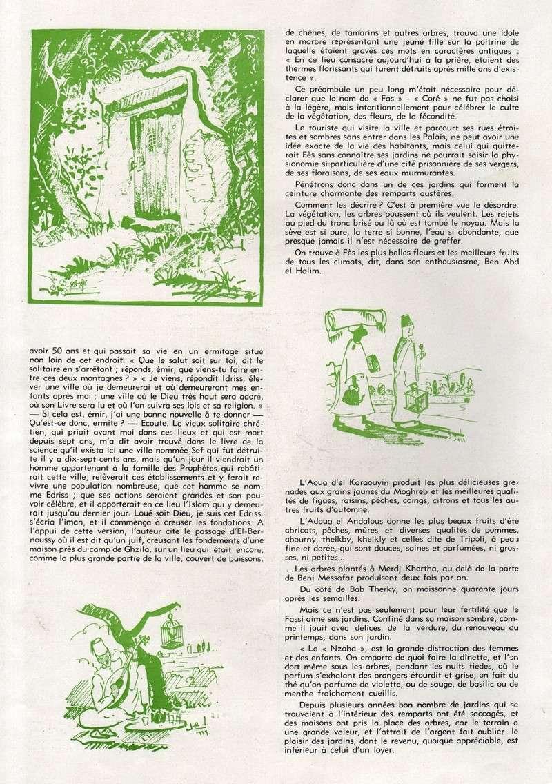 FES, capitale de l'Islam. - Page 2 51-fas10