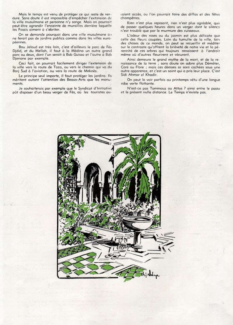 FES, capitale de l'Islam. - Page 2 52-fas10