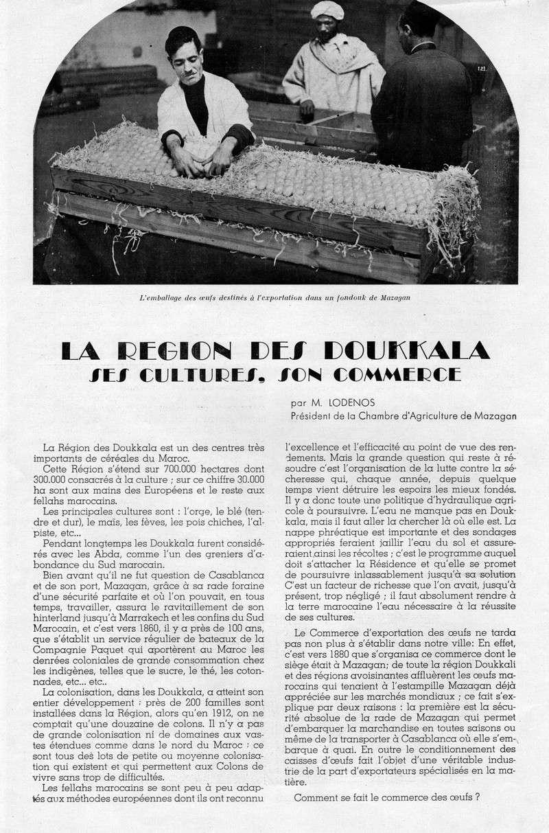 LA PRODUCTION MAROCAINE - Page 6 54-sca10