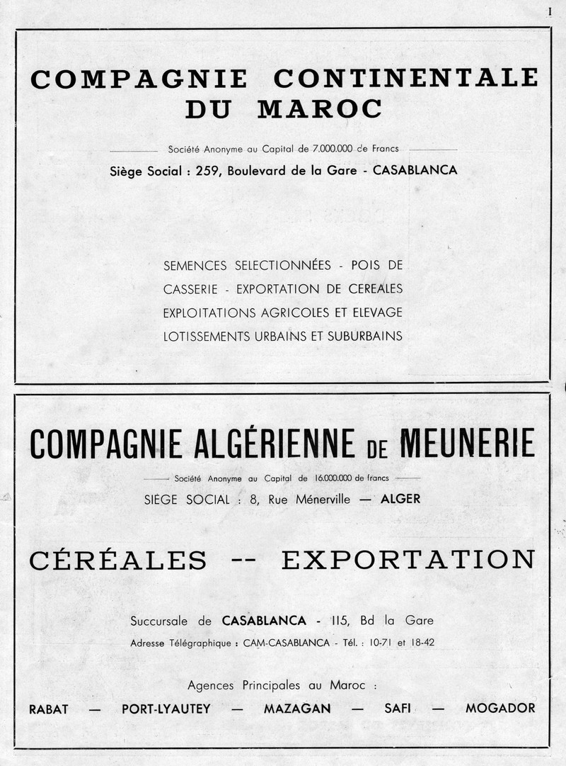 LA PRODUCTION MAROCAINE - Page 6 59-sca10