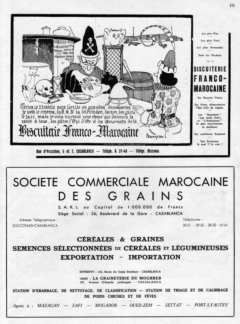 LA PRODUCTION MAROCAINE - Page 6 61-sca10