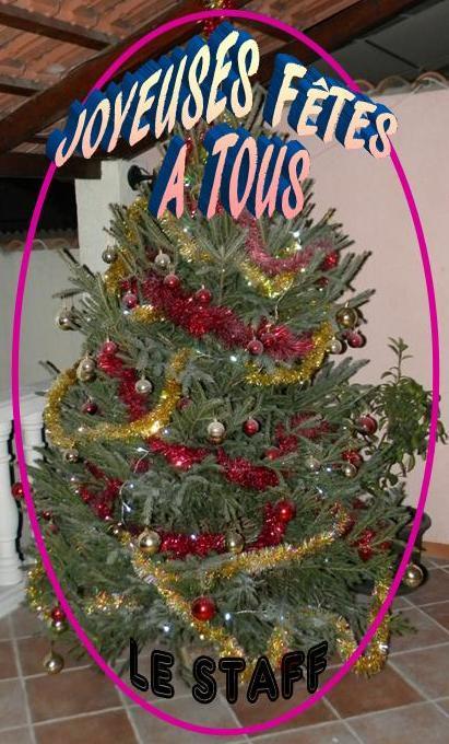 Joyeuses Fêtes et  Meilleurs Voeux de Bonne année  - Page 4 Voeux_10