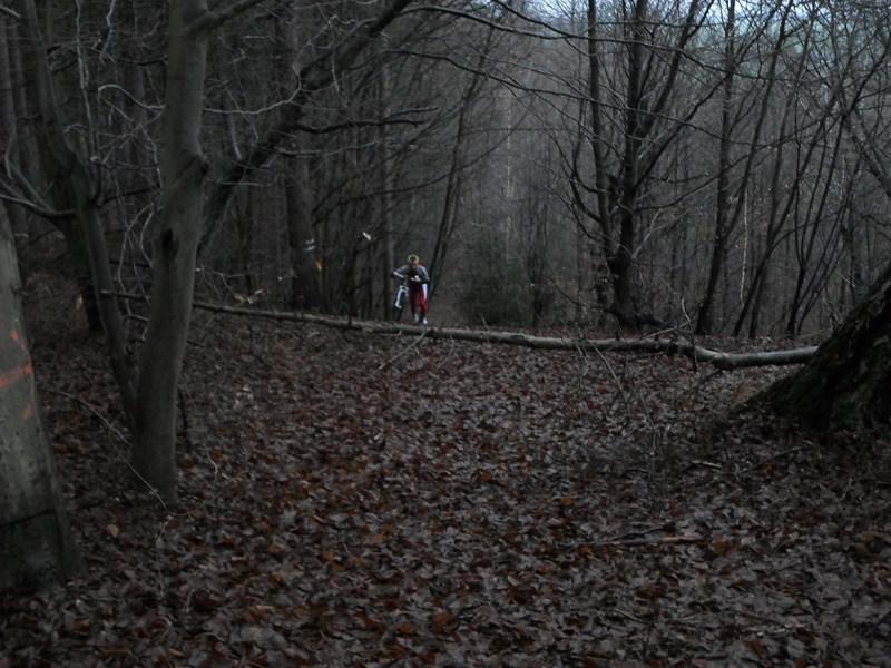 Forêt de Hez le 01er Janvier matin ??? + After Sam_1714