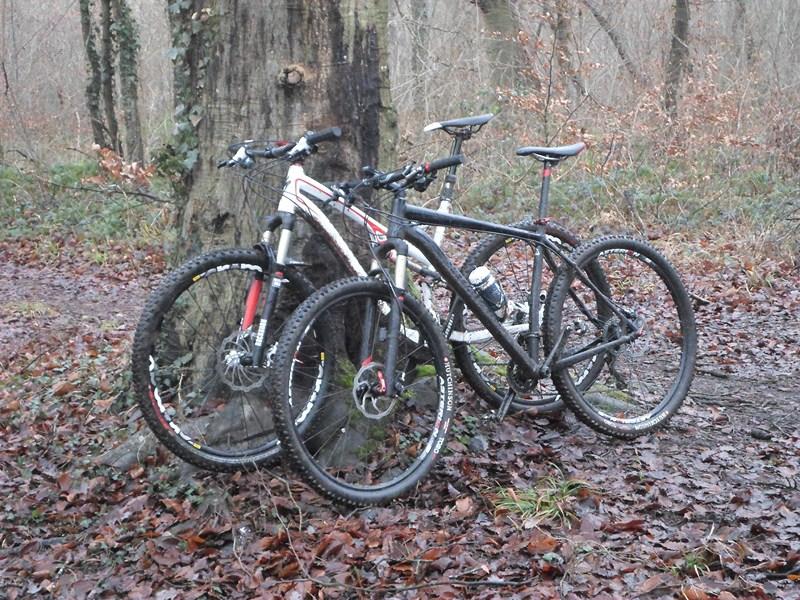 Forêt de Hez le 01er Janvier matin ??? + After Sam_1716