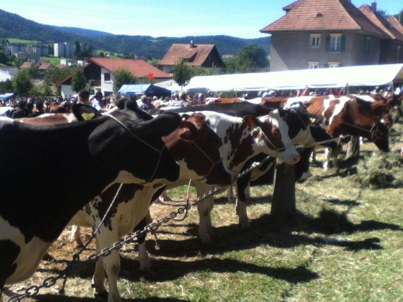 La plus grande foire de suisse 2013-017
