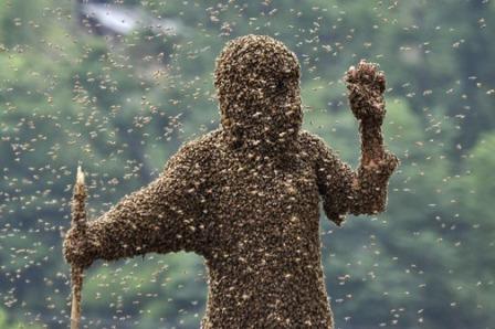 UDRUGA FENIKS: Sastanak pčelarske sekcije Paelar10
