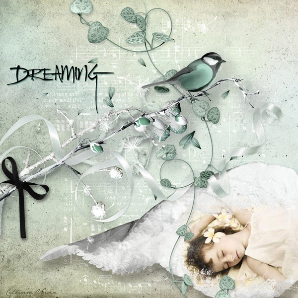 La galerie de NOVEMBRE - Page 2 Dreami10