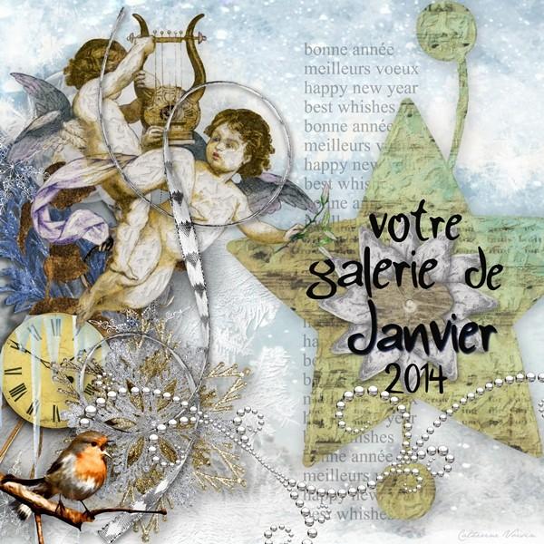 Galerie de JANVIER 2014 Galeri10