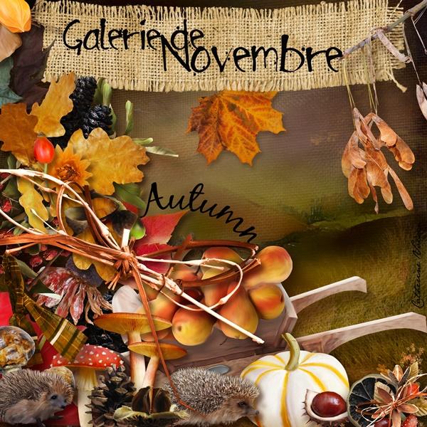 La galerie de NOVEMBRE Novemb10