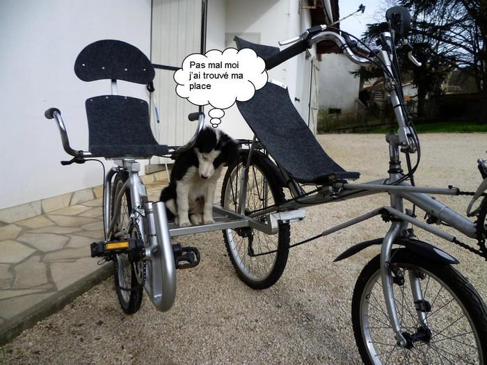 Le side-car pour vélocouché Side-c12