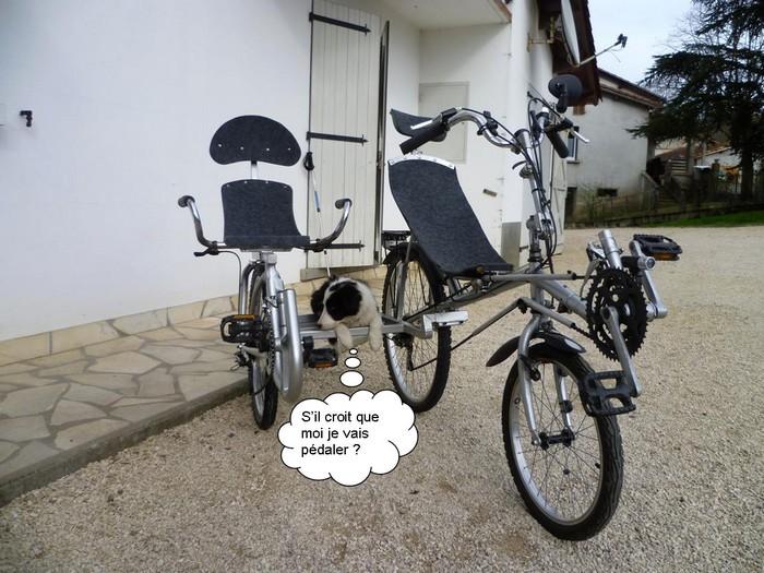 Le side-car pour vélocouché Side-c13