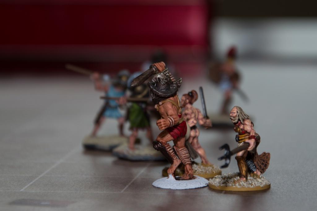 Les vendeurs de figs de gladiateurs Dsc_0010