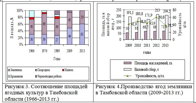 Состояние породного и сортового промышленного сортимента ягодных культур в Тамбовской области Козлова И.И.  Ndnndd32
