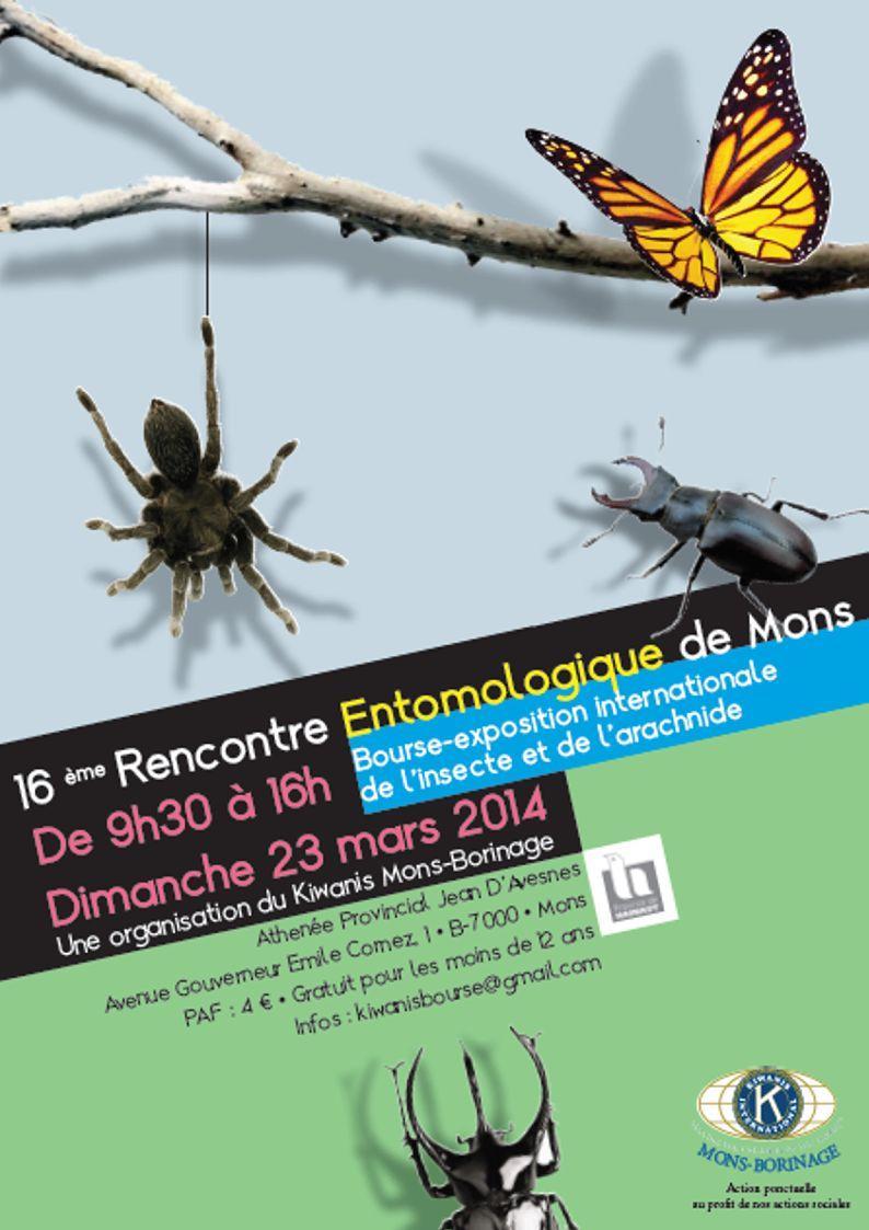 Bourse aux insectes de Mons  Mons2010