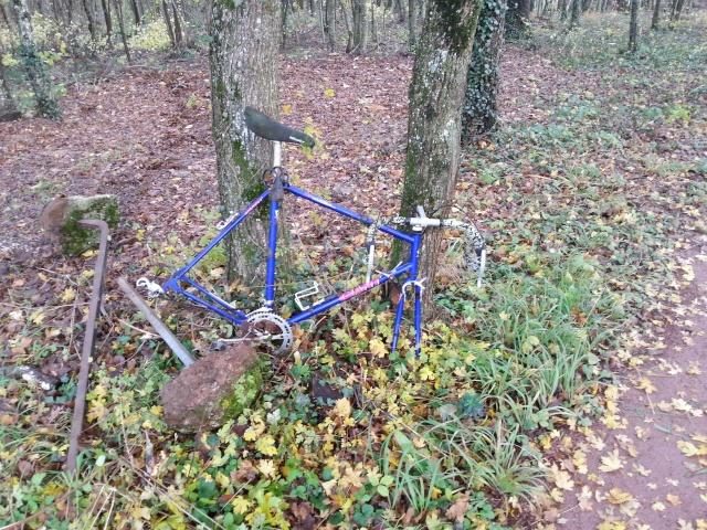 vélo et récyclage 20131110