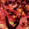 La Forêt Ecarlate