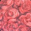 <br>Rose Garden