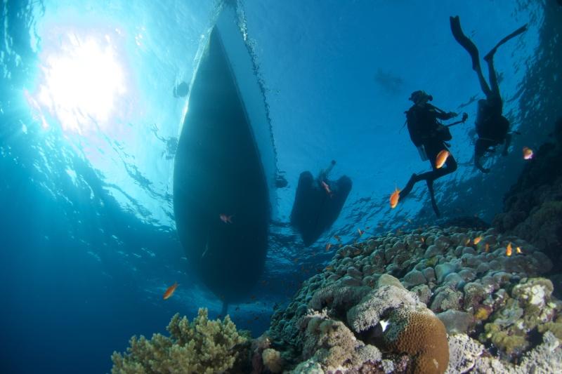 Aventure en mer rouge (Sudan inside) _dsc1510