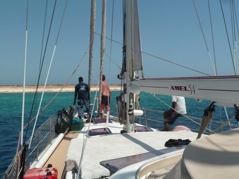 Aventure en mer rouge (Sudan inside) P1020312