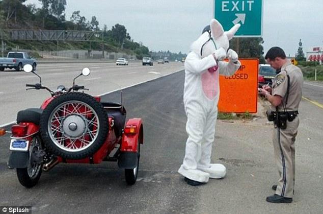 Easter Bunny caught speeding! Easter10