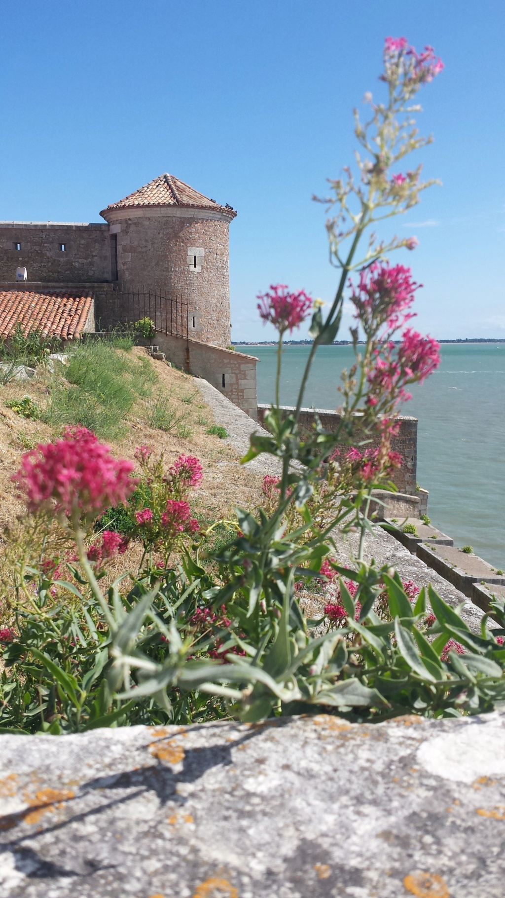 IRL Internationale , toute la France, 6 au 10 Aout, en Charentes Maritimes Face à Fort Boyard, sur une ile, des partants ? - Page 3 20180811