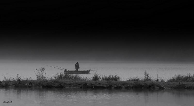 dans la brume Img_1320